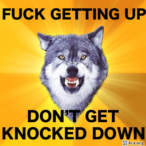 Good ole' Courage Wofl; this is my motto for the next 16 weeks.